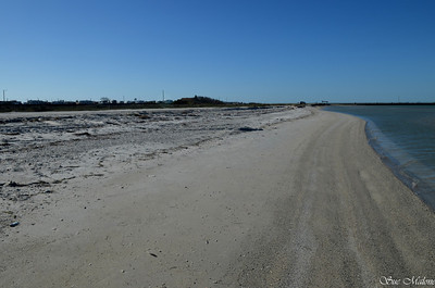 silty beach with lots of shells on the Corpus Christi Bay at NAS