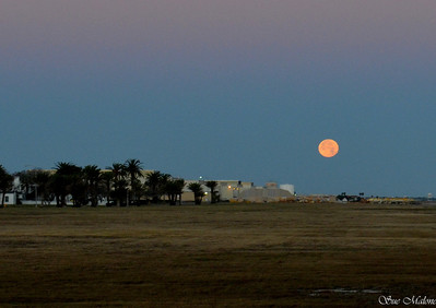 rising moon at NAS Shields Campground