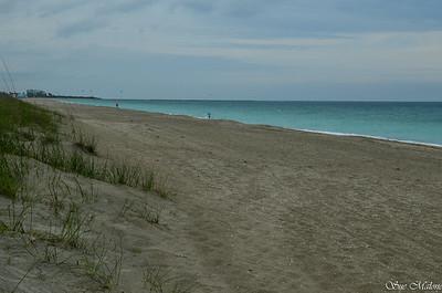 Northern Florida