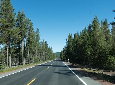 Highway 58 west toward Willamette Pass