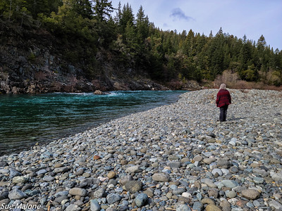Searching for fishing spots along the Smith River
