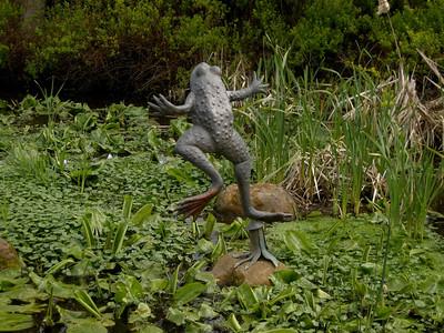 I want a bronze frog!
