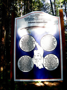 great interpretive signs along the trail
