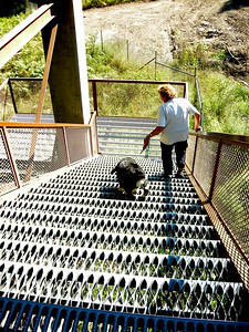 safe stairs over the railroad tracks