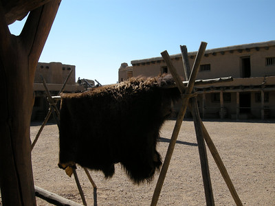 trading buffalo hides was a major economy for this fort