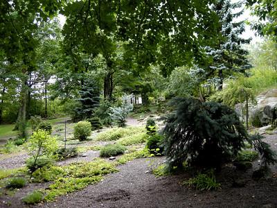 the evergreen garden at Enger