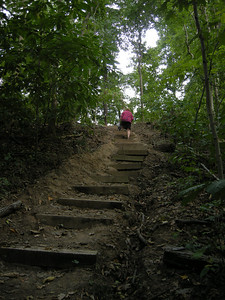 more stairs on this trail