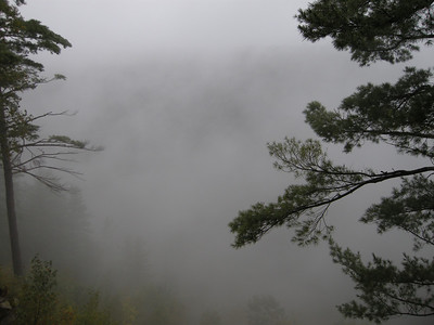 The Grand Canyon of Pine Creek shrouded in fog and rain