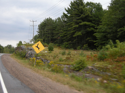 I missed the Moose and Turtle signs.  Again, passing by too quickly