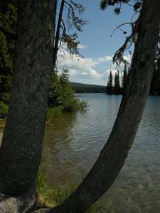 North Waldo campground area