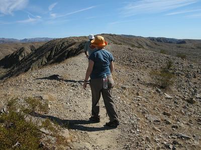 hiking the ridge run at 100-0 Palms Canyons