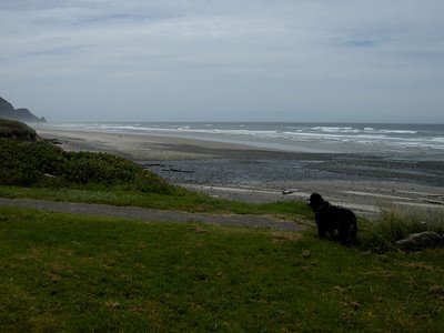 typical Oregon Coast day.  cloudy windy and chilly.