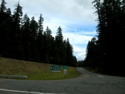 off the main road to the Avenue of the Giants