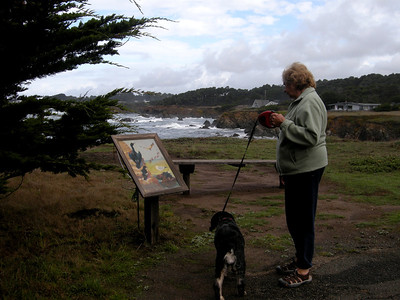 47 acres of varied habitat along the coast first bought in 1961 by a retired? nurseryman