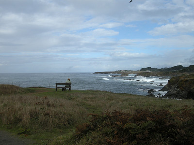 great walk around the head with ocean views and benches