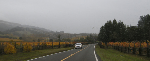 hard rain through the Anderson Valley in Mendocino County