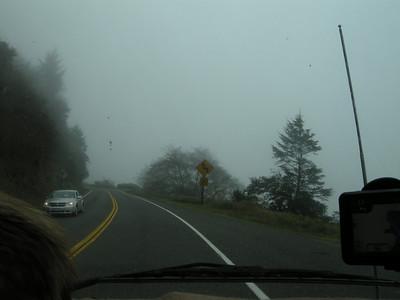 more fog, more curves, more obscured ocean