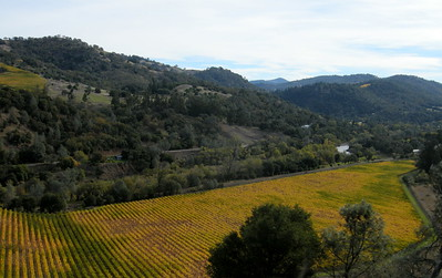 November day in Sonoma County