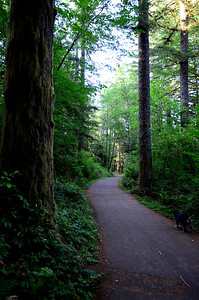 paved bike trail from the campground to the dog area