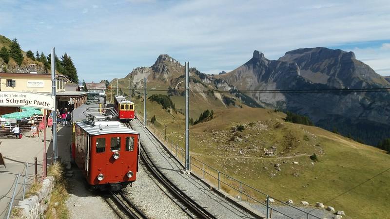 Schynige-Platte-Bahn,  800mm, 1500 v rack railway, Switerland, photo B Harkness