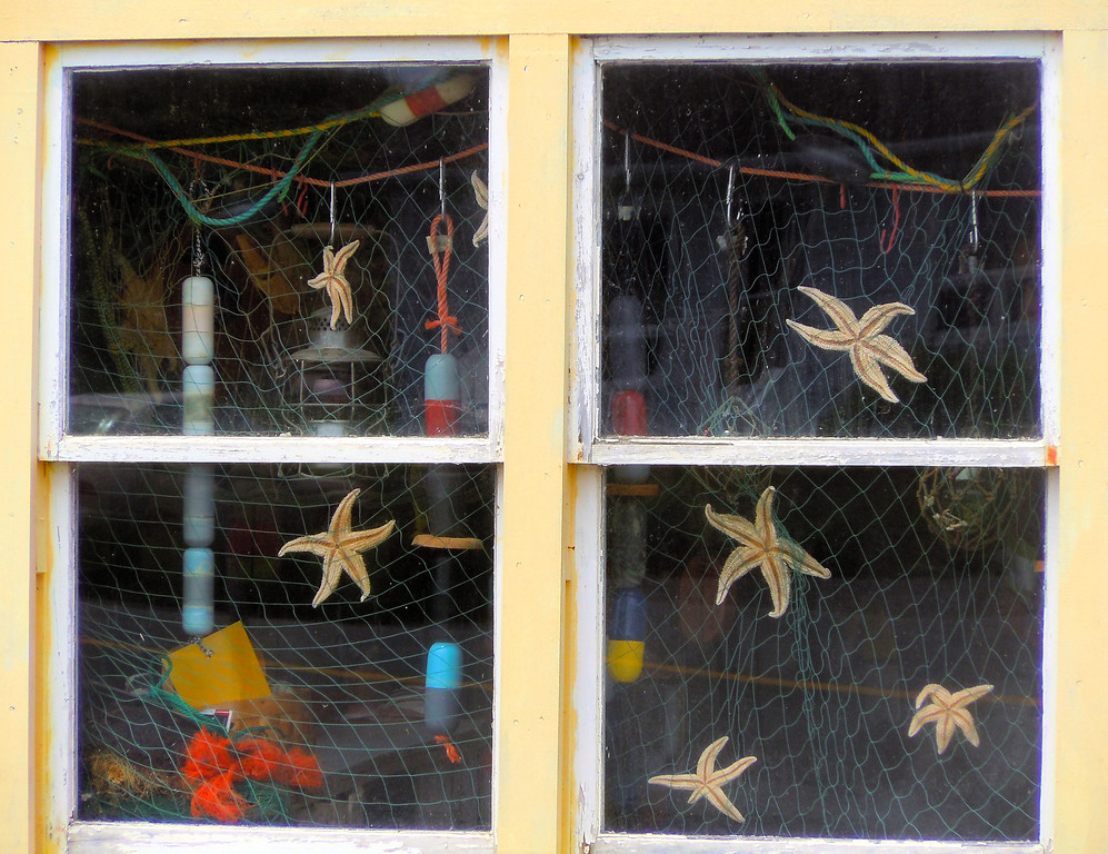 Starfish Window