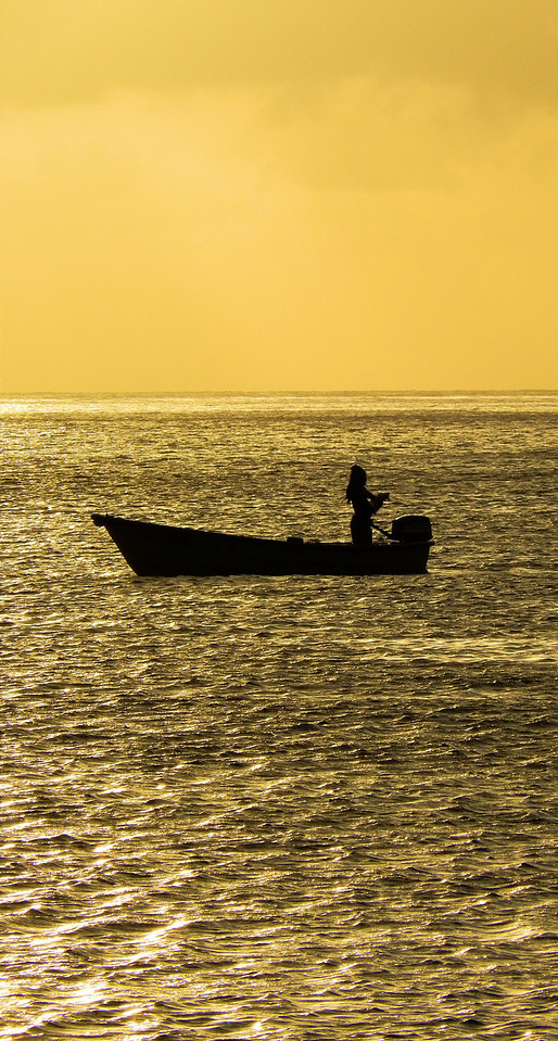 Golden Fisherman