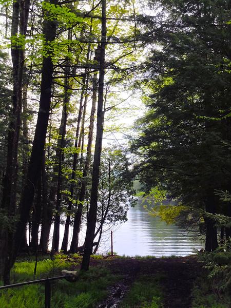 Travels to The Point, Saranac Lake NY