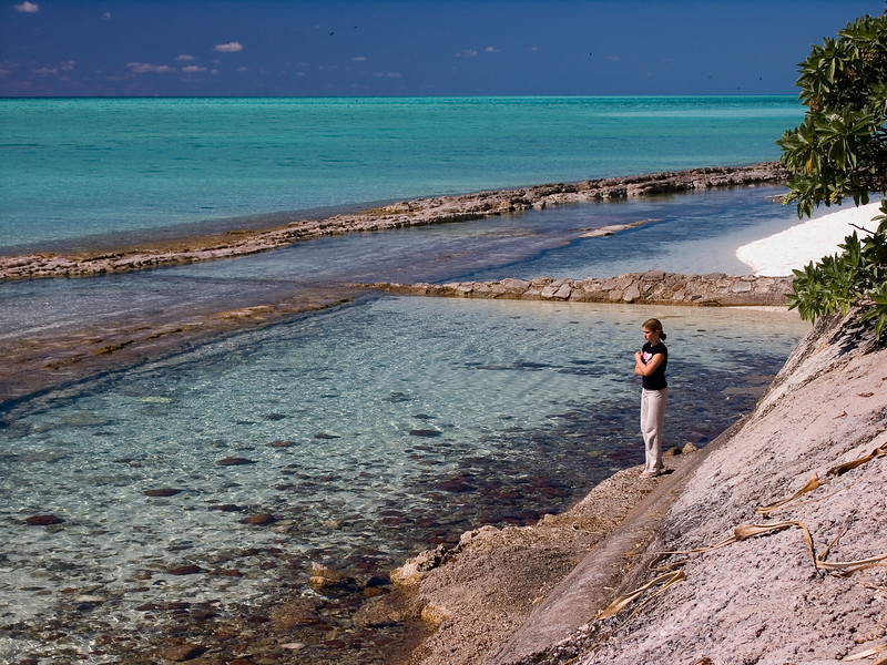 Mackenzie on Heron Island - south end of barrier reef - low tide