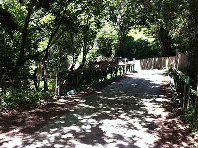 Mtn Biking Old Coast Road - Near Little Sur River