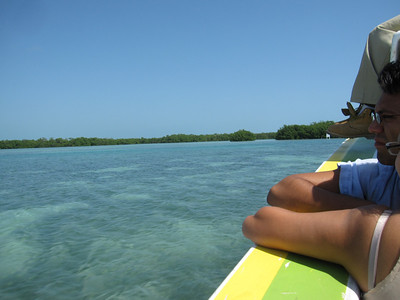 Mangrove islands seen from Water Taxi on way to Caye Caulker