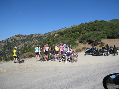 Lots of bikers up and down the coast