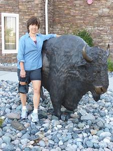 17 Shirley and bison