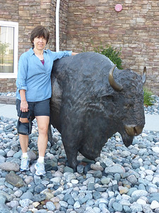 18 Shirley and bison