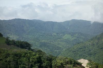 Monteverde area