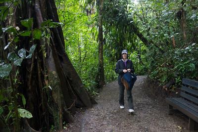 Jan hiking the Monteverde Cloud Forest