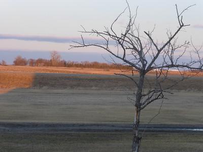 23_Minnesota farmland at dusk