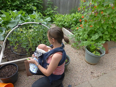 Andrea with Finn in their fruitful garden.