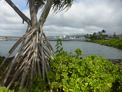 Pacific Historic Park, Pearl Harbor