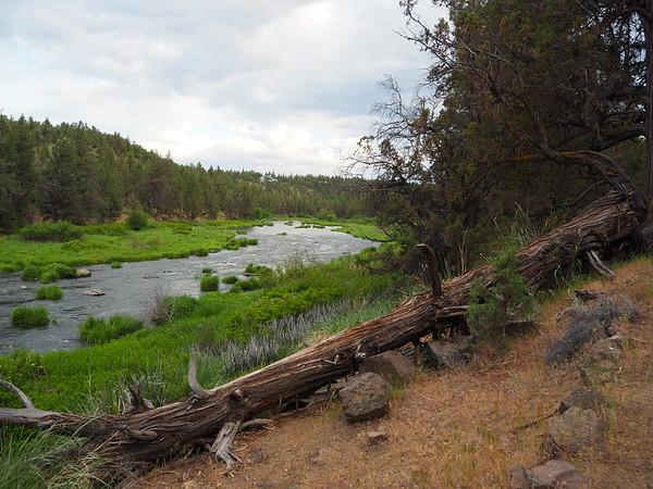 Evening walk on river trail