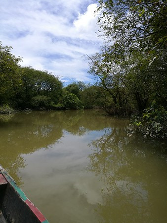 2017 Ratargul Swamp Forest