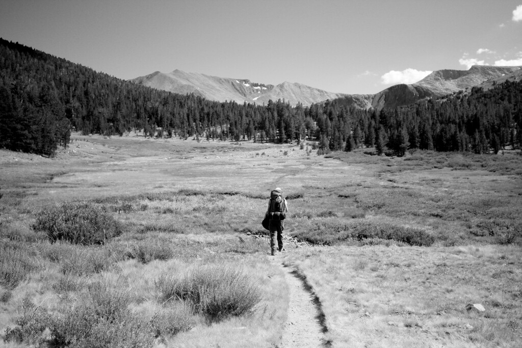 Lone Backpacker. Yosemite National Park