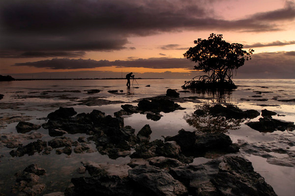 """Photographer at Dawn""<br /> <br /> Friend Paul Marcellini sets up his composition as the sun begins to rise on Big Pine Key"