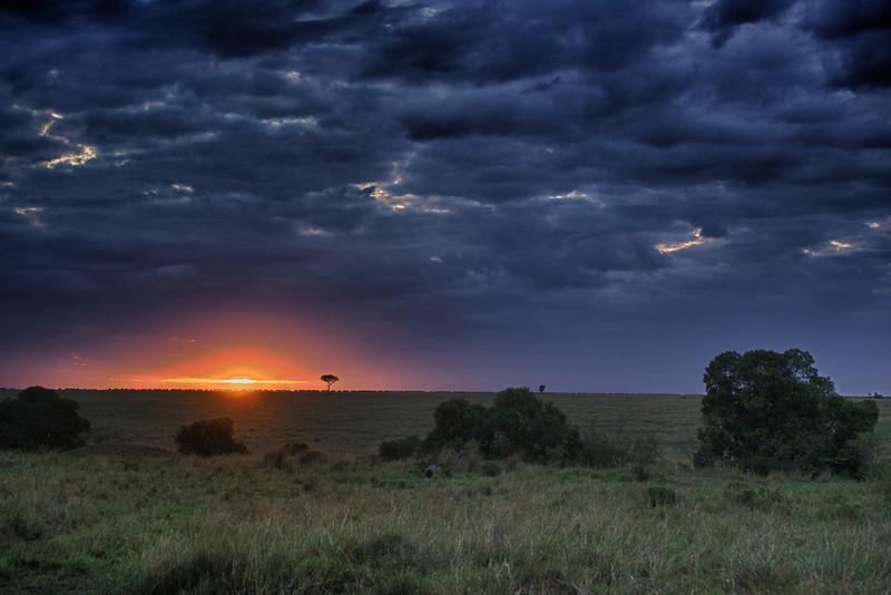 Sunrise over the Mara, wildebeest on the horizon.
