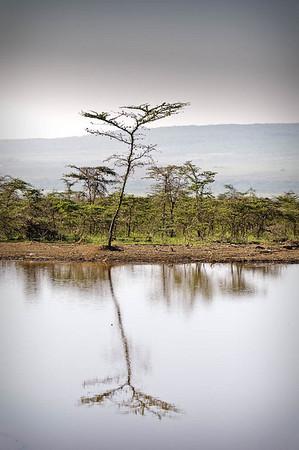 MM_Kenya-8533
