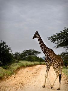 Uganda-0458