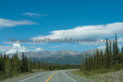 On the road to Denali NP.