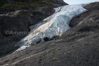 Exit Glacier_20140923_097