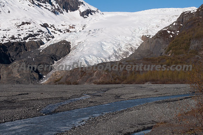 Exit Glacier from the bottom.