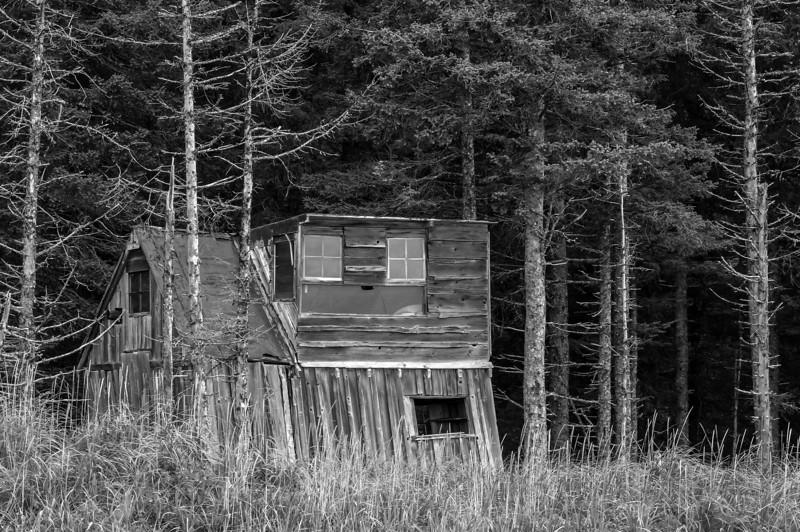 TRAK-13-40: Abandon hunters cabin at Lake Clark National Park