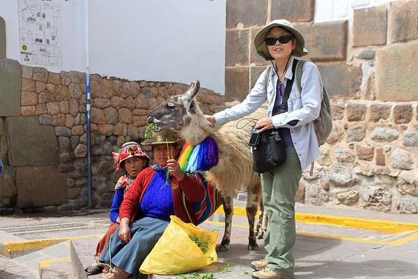 Cusco and Machu Picchu